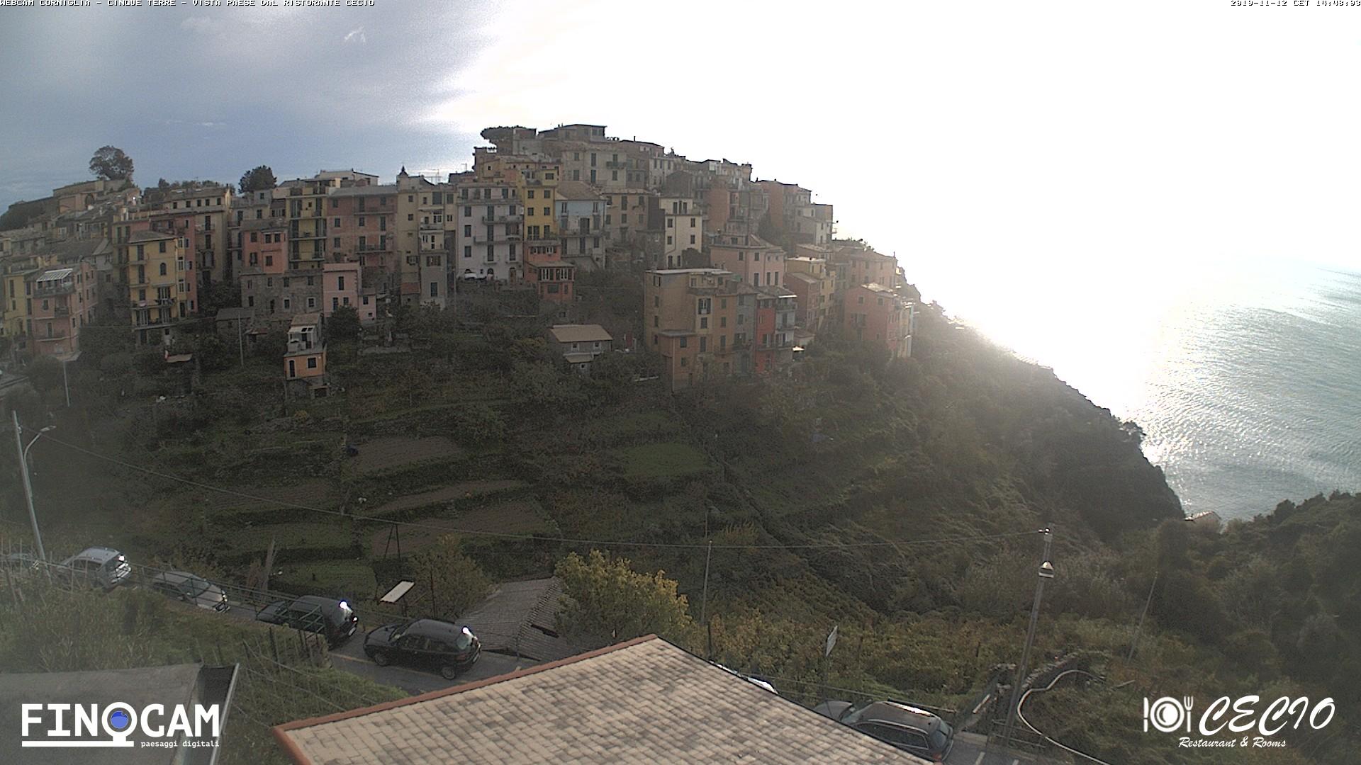 Webcam in Manarola, Cinque Terre